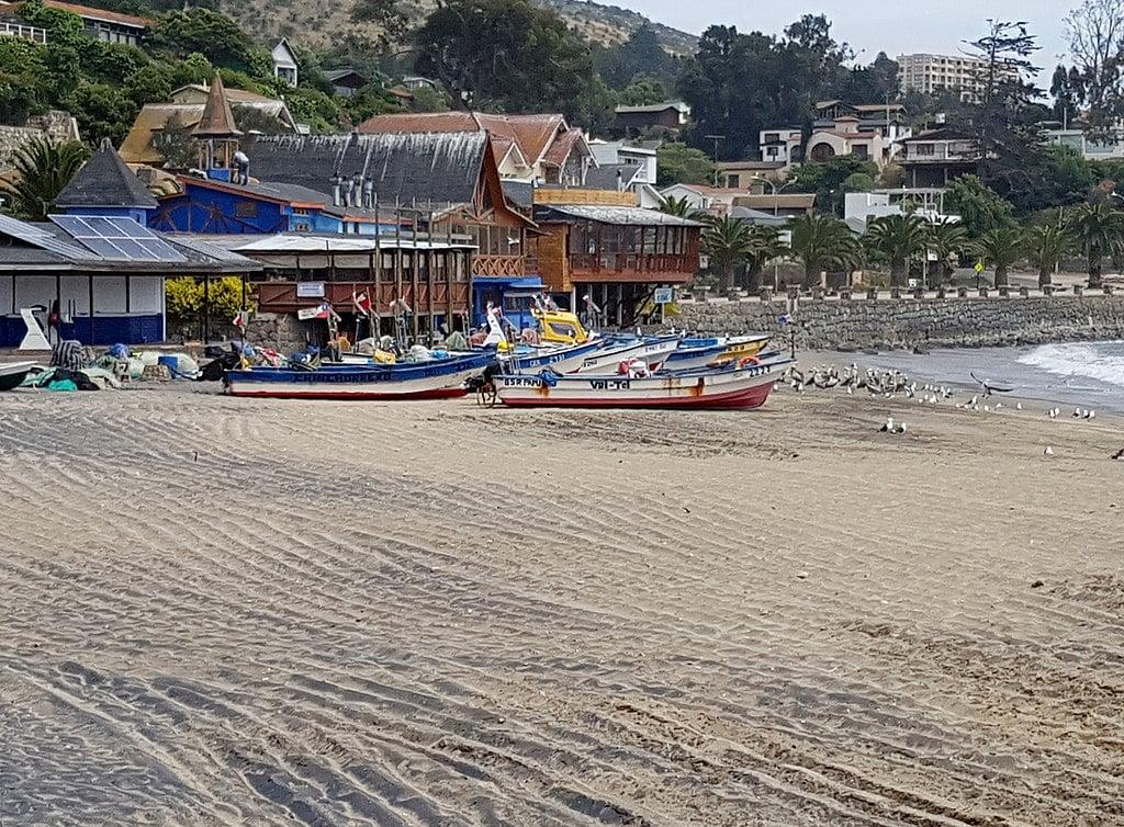 playas de Papudo