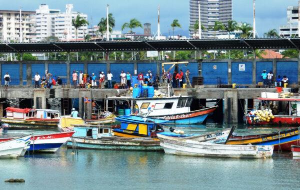 mercado con pescadores