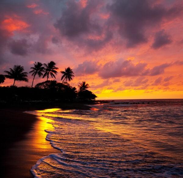 2 Formas de llegar y 4 formas de moverse por Hawái