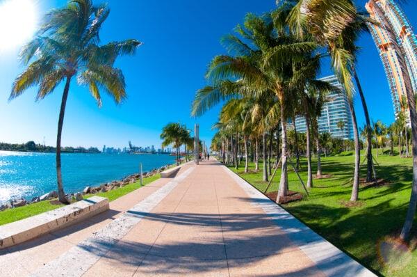 5 formas de moverse en Miami