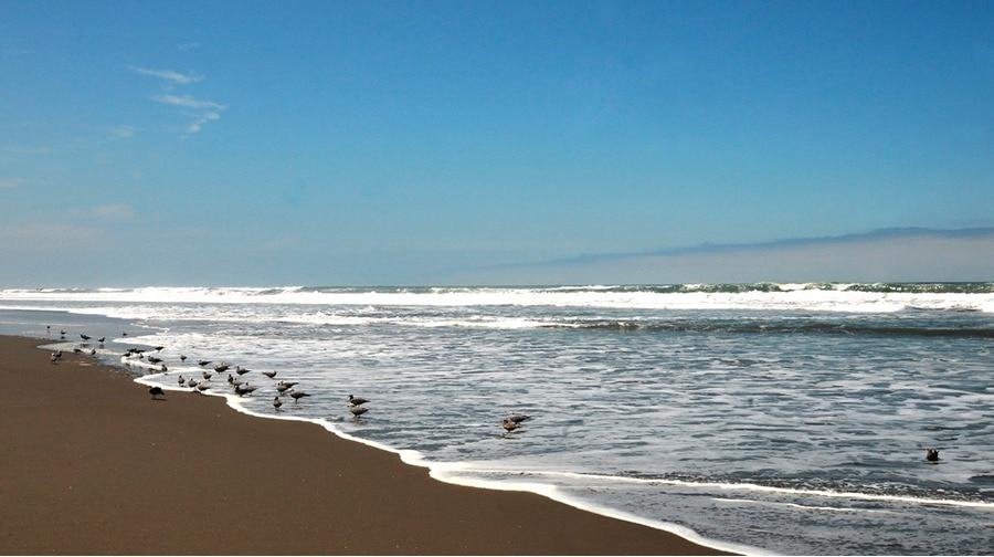 Playas En Mollendo