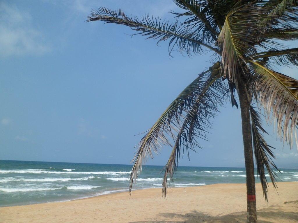 Playas De Carabobo