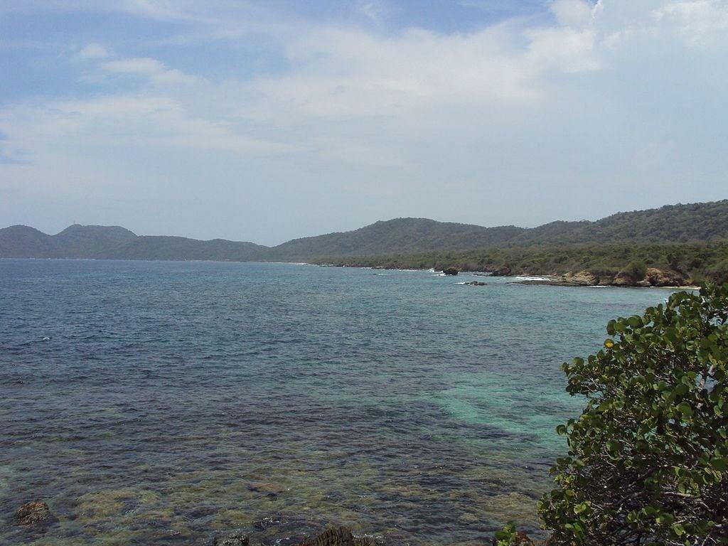 Playas De Higuerote